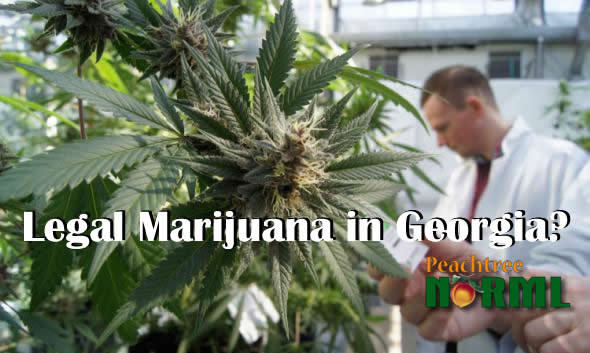 Marijuana Georgia